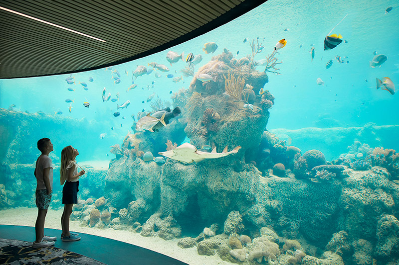 Tourism Events Queensland daydream island