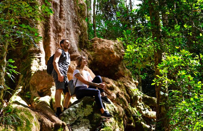 Australia's Best Hikes